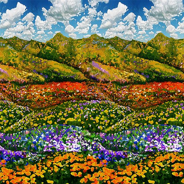An Artists Wonderland