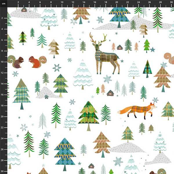 Woodland Winter